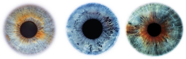 eyescapes by Rankin